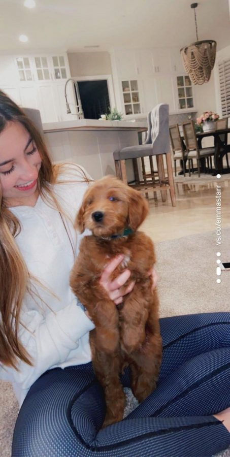 Emma Eyler '21 and her new puppy, Franklin. Photo provided by Emma Eyler.