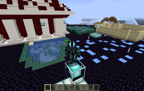 The opportunities of fun in Minecraft are endless. Photo by Anna Jordan