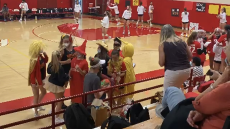 Royal fans in their Red and Gold costumes.